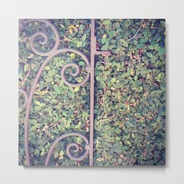 Iron and Ivy Metal Print