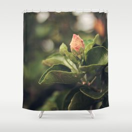 Capullo de Hibisco - Hibiscus bud Shower Curtain