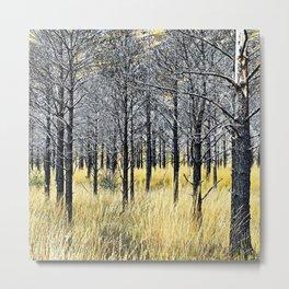 Walking with trees Metal Print