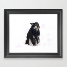 Boomer, Snow Framed Art Print