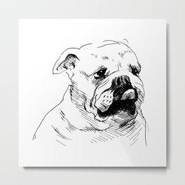 Drawing a dog's head. Metal Print
