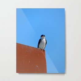 Swallow & Sky Metal Print