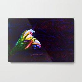 """""""Cactus Flower At Sunset #85"""" Photograph Metal Print"""