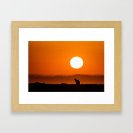 Early Morning Cat Framed Art Print