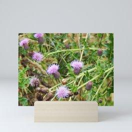 Thistles Mini Art Print