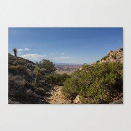 desert stroll Canvas Print