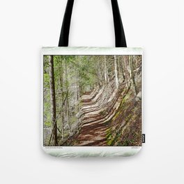 FOREST OF PARALLEL SHADOWS Tote Bag