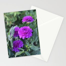 Purple flower in Butchart's Garden Stationery Cards