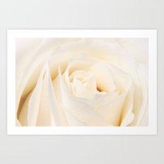 White Winterrose - Rose- Roses Art Print