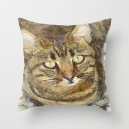 Cute Tabby Looking Up Throw Pillow