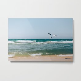 Gull Flight Over Lake Michigan Metal Print
