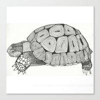 tortoise Canvas Prints featuring Tortoise by Carissa Tanton