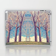 The nature of symmetry  Laptop & iPad Skin