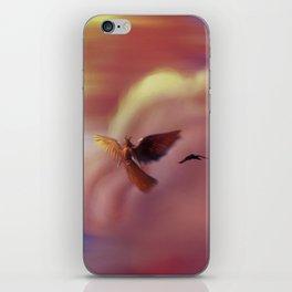 Into the Headwinds iPhone Skin