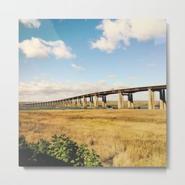Bridges over a field Metal Print