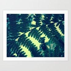 Through the Fern Art Print