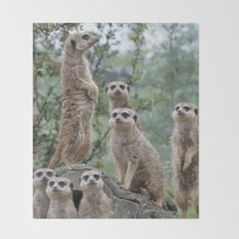 Meerkat 2014-0905 Throw Blanket