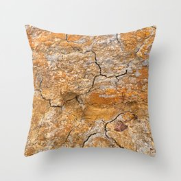 Cracked Earth Texture Throw Pillow