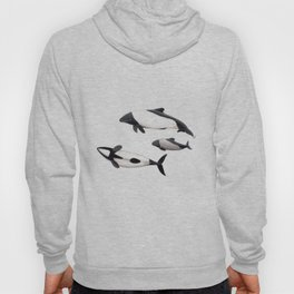 Commerson´s dolphins Hoody