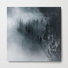 Dark woods 1 Metal Print