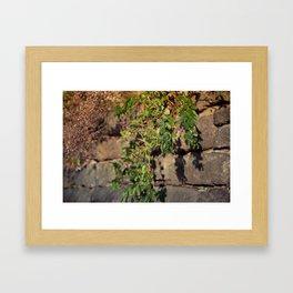 Leaves n' berries Framed Art Print