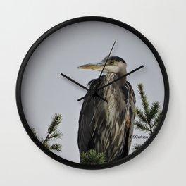 Tree Top Heron at Dawson Creek Park Wall Clock