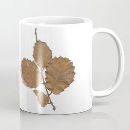 Quercus leaves Coffee Mug