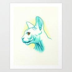 Sphynx cat #01 Art Print