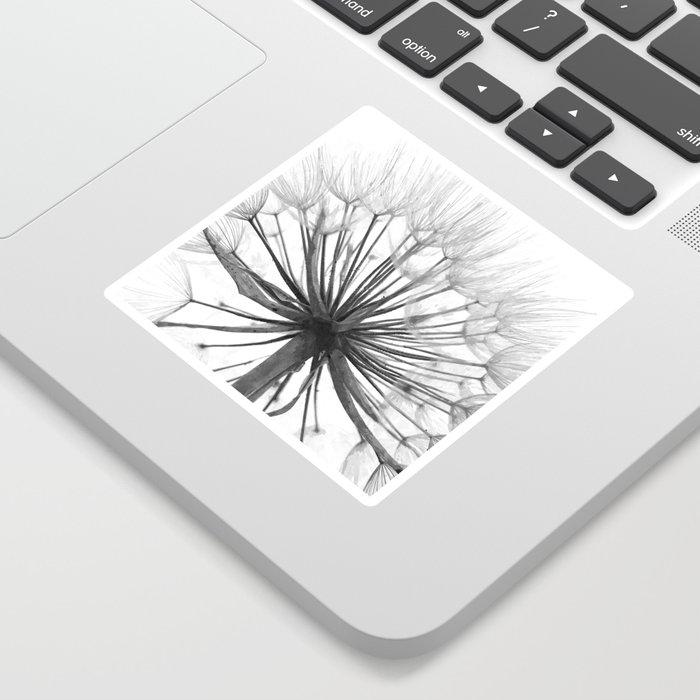 Black and White Dandelion Sticker