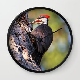 Pileated Woodpecker at Work Wall Clock