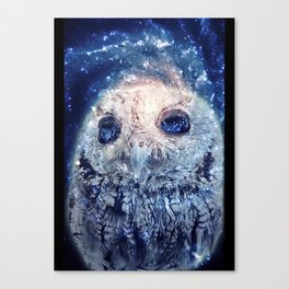 Space Owl Canvas Print
