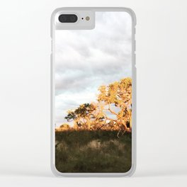 I Love South Africa Clear iPhone Case