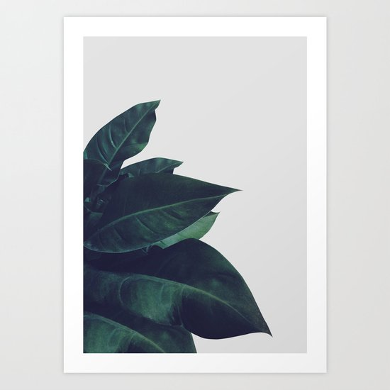 Enlighten Art Print