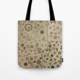 Diatom Design Tote Bag