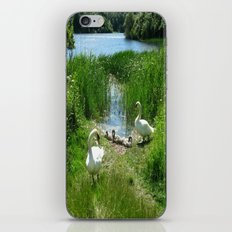 Bosherston Lily Ponds.Pembrokeshire.Wales. iPhone & iPod Skin