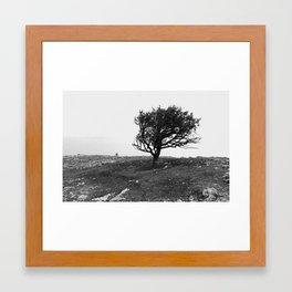 Krym Framed Art Print