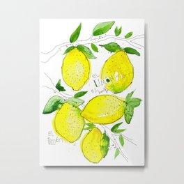 El Limon Metal Print