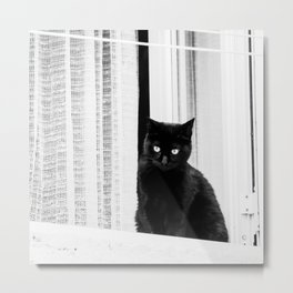 Black Cat at The Window - Black and White #decor #society6 #buyart Metal Print