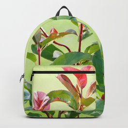 Greenery and red Backpack