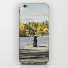Charlie on the Pier iPhone Skin