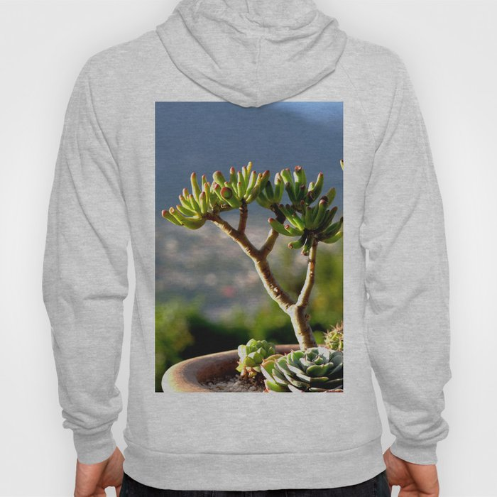 suculent at sunset Hoody
