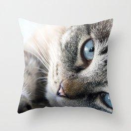Blue Eyed Cat Close Up Throw Pillow