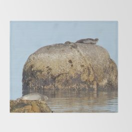 Seals and Boulders Throw Blanket