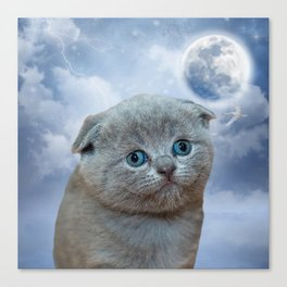 Lonely Little Kitty Canvas Print