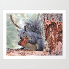 Squirrel Snack Art Print