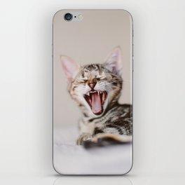 Sleepy cat iPhone Skin