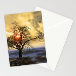 Tree in November sun Stationery Cards