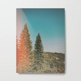 Kaylee Metal Print