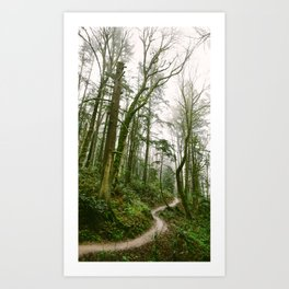 Forest // Path Art Print