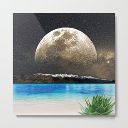 Aloe Vera Moon Beach Metal Print
